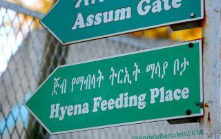 cartelli stradali in africa foto di angela bartoletti